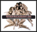 Strip Academy - Die erogenste Zone Deutschlands!